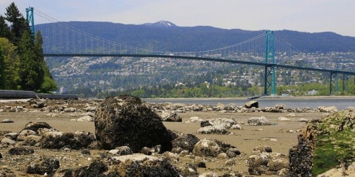 Photo taken from the shores of Stanley Park in Vancouver BC