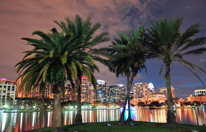 a photo of a beautiful sky in Orlando with palm trees in the forefront and the city skyline in the background