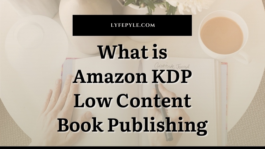 What is Amazon KDP Low Content Book Publishing