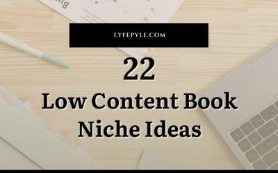 22 Low Content Book Niche Ideas Plus Bonus Sub-Niches
